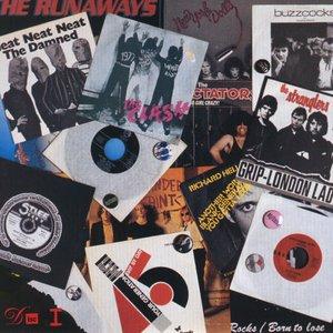 Bild för 'No Thanks! The 70s Punk Rebellion (disc 1)'
