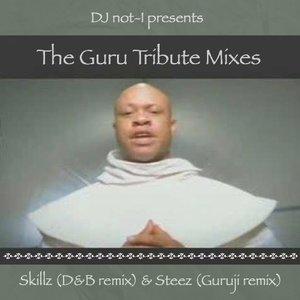 Image for 'The Guru Tribute Mixes'