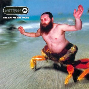 Image for 'The Fat of the Band'