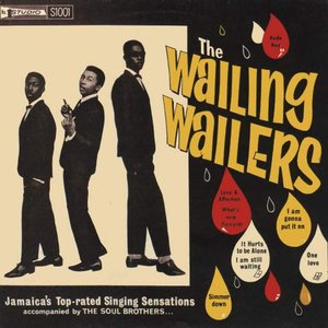 Image for 'The Wailing Wailers'
