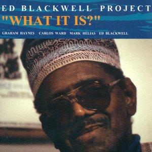 Imagem de 'Ed Blackwell Project Vol.1: What It Is?'