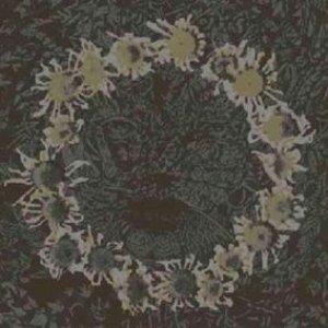 Image for 'Compendium 1994-2000'