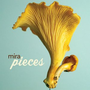 Image for 'pieces (maxi)'