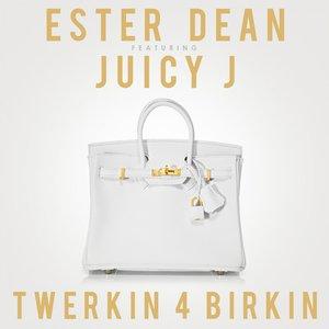 Image for 'Twerkin 4 Birkin (feat. Juicy J) - Single'