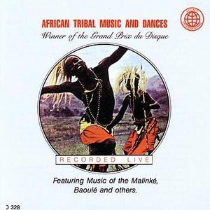 Image pour 'African Tribal Music And Dances'