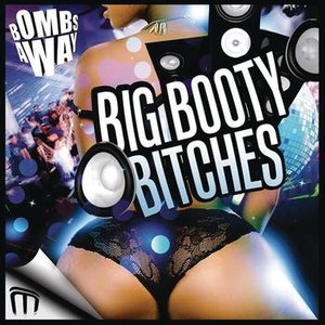 Image for 'Big Booty Bitches'