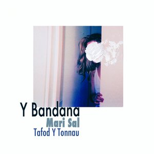 Image for 'Mari Sal / Tafod Y Tonnau'