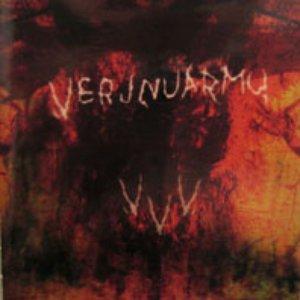 Image pour 'Verta, voemoo ja viitakkeita'