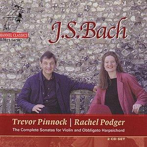 Image for 'Continuo Sonata In E Minor BWV 1023: Allegro'
