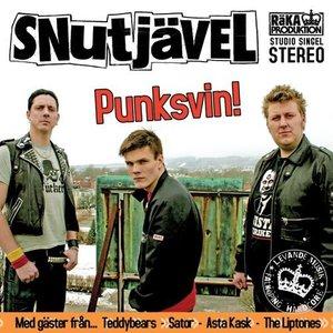 Image for 'Punksvin'