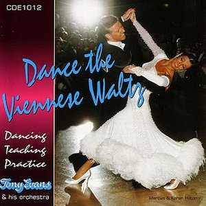 Image for 'Anniversary Song (Music for Dancing)'
