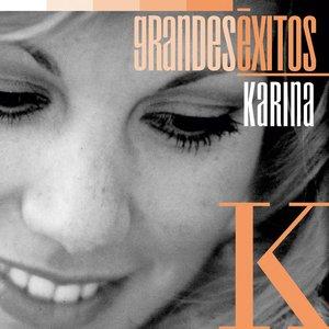 Immagine per 'Grandes Éxitos: Karina'