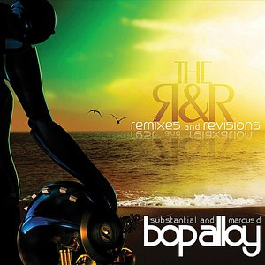 Bild för 'The R & R (Remixes & Revisions)'