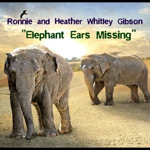Image for 'Elephant Ears Missing'
