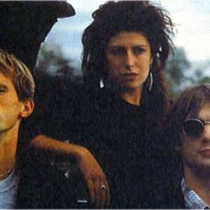 Bild för 'Coldwave'