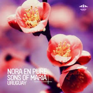 Image for 'Nora En Pure & Sons Of Maria'