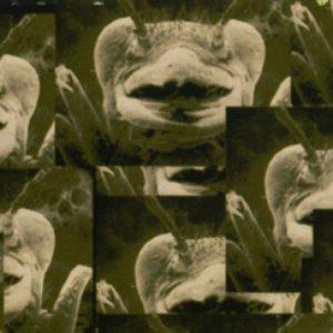 Image for 'Mind Necrosis Factor vs. Kenji Siratori'