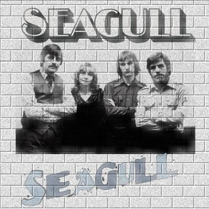Image for 'Seagull'