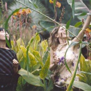 Image for 'Zeena Parkins & Ikue Mori'