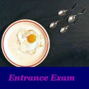 Image for 'Entrance Exam'