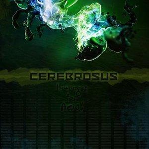 Bild für 'Cerebrosus'