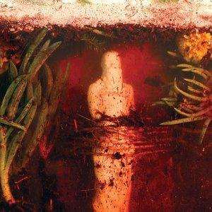 Bild für 'Indifferent Rivers Romance End'