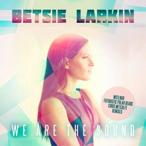 Image pour 'We Are the Sound (Remixes)'