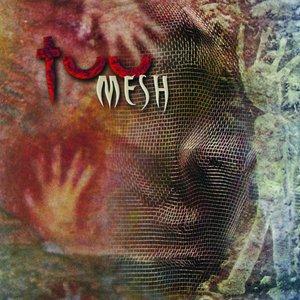 Bild für 'Mesh'