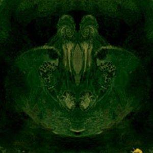 Image for 'Unicorn lullaby'