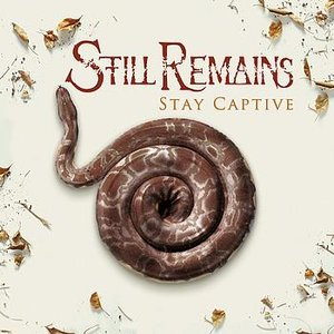Image for 'Stay Captive'