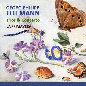 Image for 'Georg Philipp Telemann, Trios & Concert'