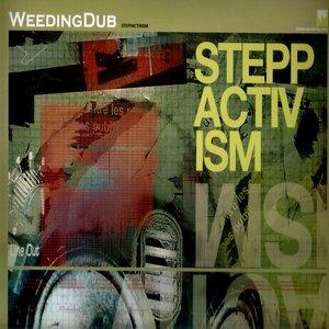 Image for 'Steppactivism'