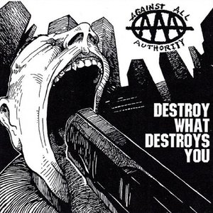 Image for 'Destroy What Destroys You'