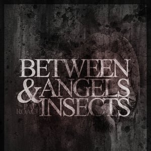 Изображение для 'Between Angels and Insects (Papa Roach Cover)'