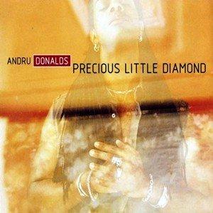Image for 'Precious Little Diamond'