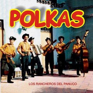 Image for 'Polkas'