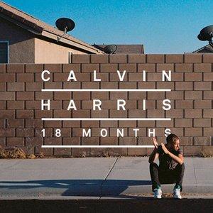 Bild för '2012 - 18 months'