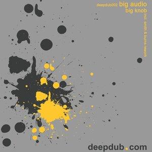 Image for 'Big Audio - Big Knob'