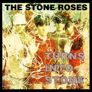 Bild för 'Turns Into Stone'