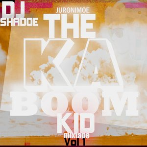 Image for 'The KABOOM KID VOL.1'