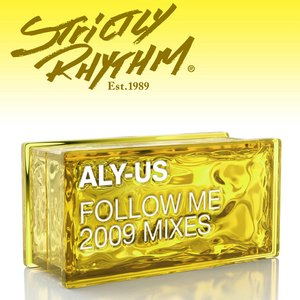 Bild für 'Follow Me (2009 Mixes)'