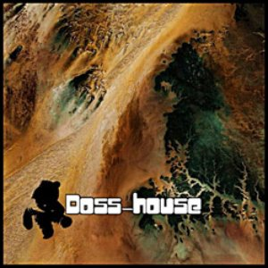 Image for 'doss-house'