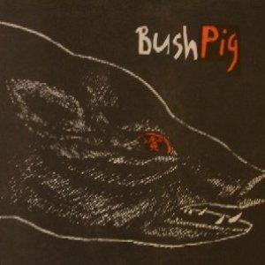 Image for 'Bushpig'
