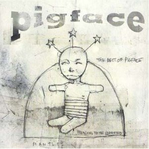 Image for 'The Best Of Pigface'