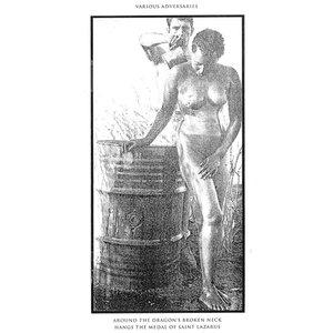 Image for 'Virgins'