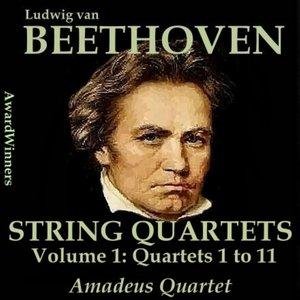Image for 'String Quartet No. 1 F major, Op. 18-01 : I. Allegro con brio'