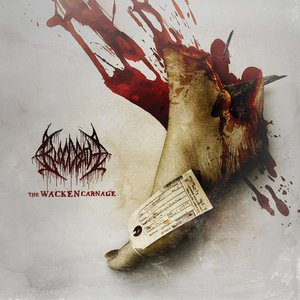 Image for 'The Wacken Carnage'