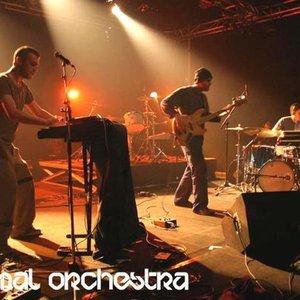 Bild för 'Minimal Orchestra'