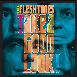 Image for 'Take a Good Look!'