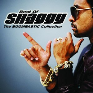 Image for 'The Boombastic Collection - Best of Shaggy'